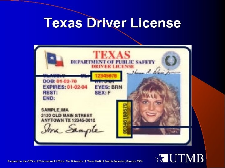 Texas Driver License Prepared by the Office of International Affairs, The University of Texas