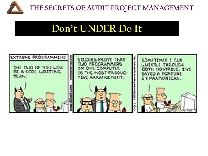THE SECRETS OF AUDIT PROJECT MANAGEMENT Don't UNDER Do It • VII. Resources Your