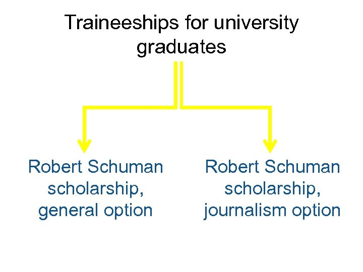 Traineeships for university graduates Robert Schuman scholarship, general option Robert Schuman scholarship, journalism option