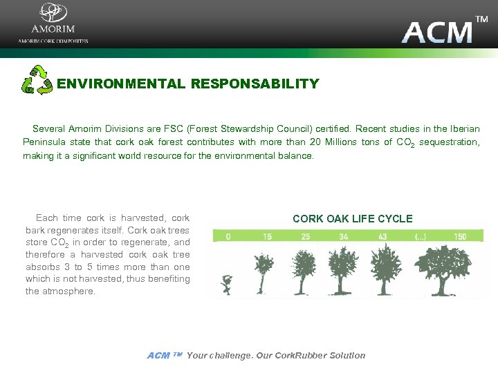 ENVIRONMENTAL RESPONSABILITY Several Amorim Divisions are FSC (Forest Stewardship Council) certified. Recent studies in
