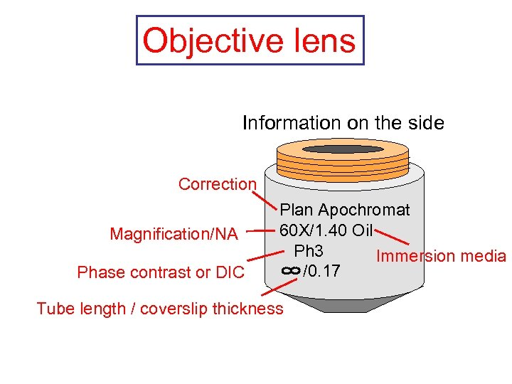 Objective lens Information on the side Correction Magnification/NA Phase contrast or DIC Plan Apochromat