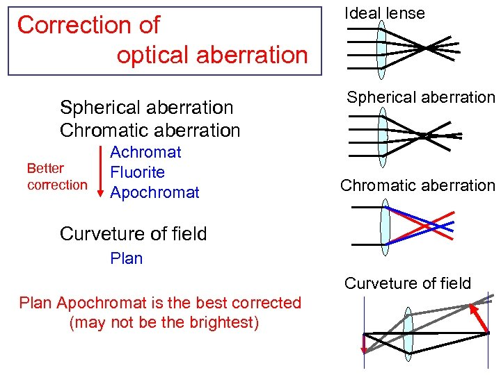 Correction of optical aberration Spherical aberration Chromatic aberration Better correction Achromat Fluorite Apochromat Ideal