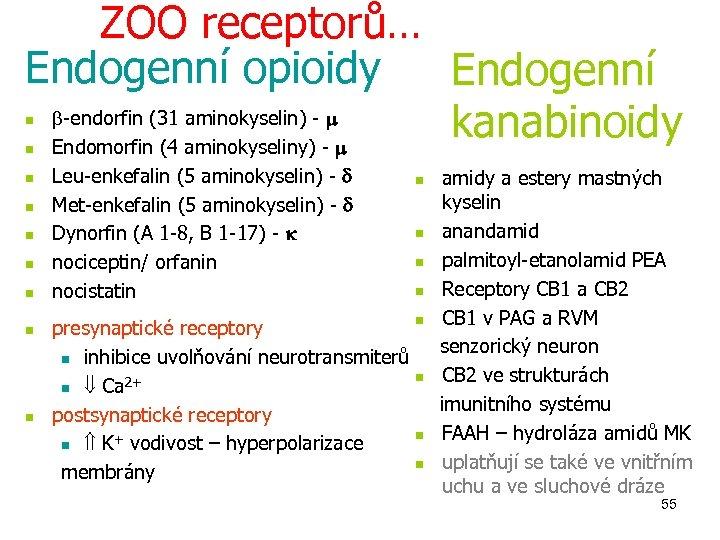 ZOO receptorů… Endogenní opioidy Endogenní -endorfin (31 aminokyselin) - kanabinoidy Endomorfin (4 aminokyseliny) -