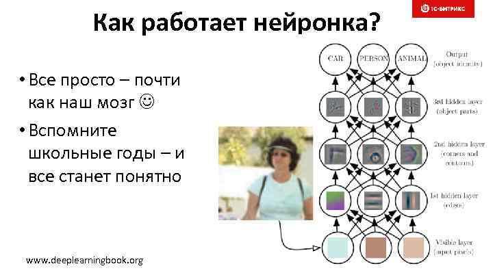 Как работает нейронка? • Все просто – почти как наш мозг • Вспомните школьные