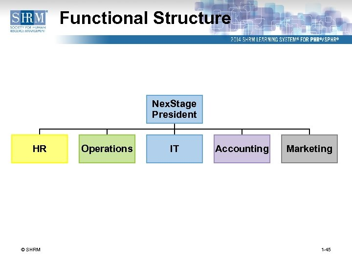 Functional Structure Nex. Stage President HR © SHRM Operations IT Accounting Marketing 1 -45