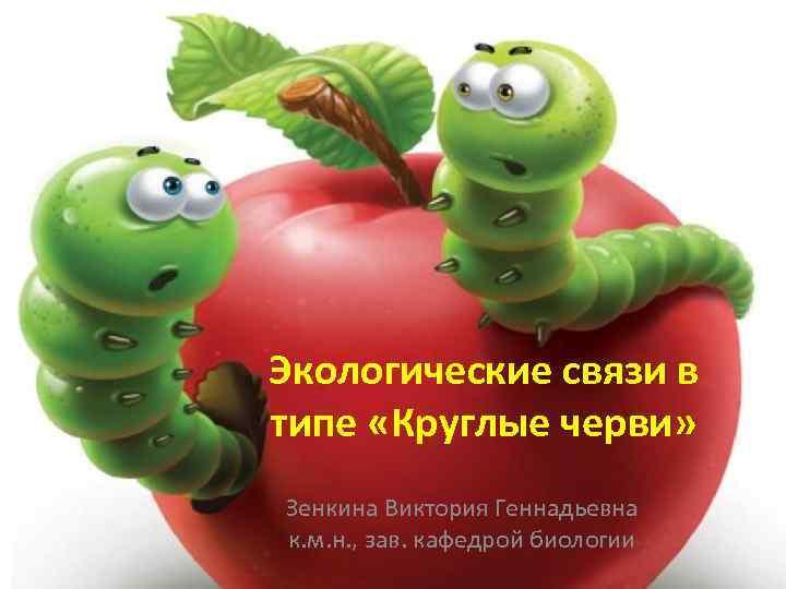 Экологические связи в типе «Круглые черви» Зенкина Виктория Геннадьевна к. м. н. , зав.