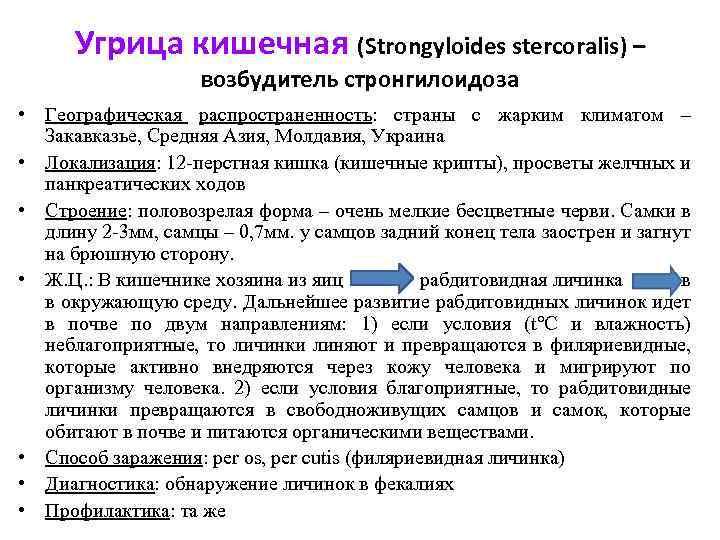 Угрица кишечная (Strongyloides stercoralis) – возбудитель стронгилоидоза • Географическая распространенность: страны с жарким климатом