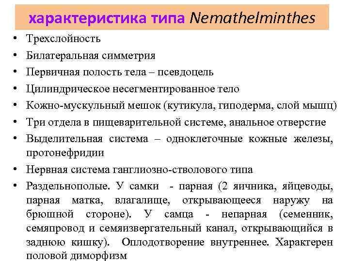характеристика типа Nemathelminthes • • Трехслойность Билатеральная симметрия Первичная полость тела – псевдоцель Цилиндрическое