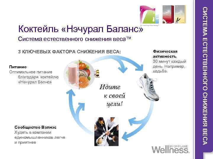 Программа Похудения Wellness.