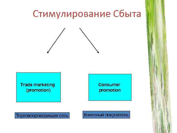 Стимулирование Сбыта Trade marketing (promotion) Торговопроводящая сеть Consumer promotion Конечный покупатель