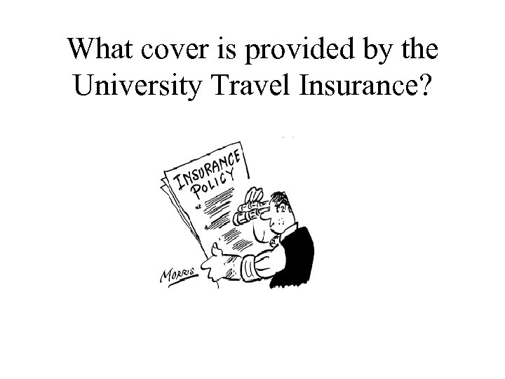 What cover is provided by the University Travel Insurance?