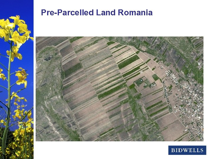 stewardship & Land Romania Pre-Parcelled prosperity