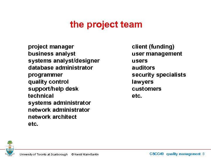 the project team project manager business analyst systems analyst/designer database administrator programmer quality control