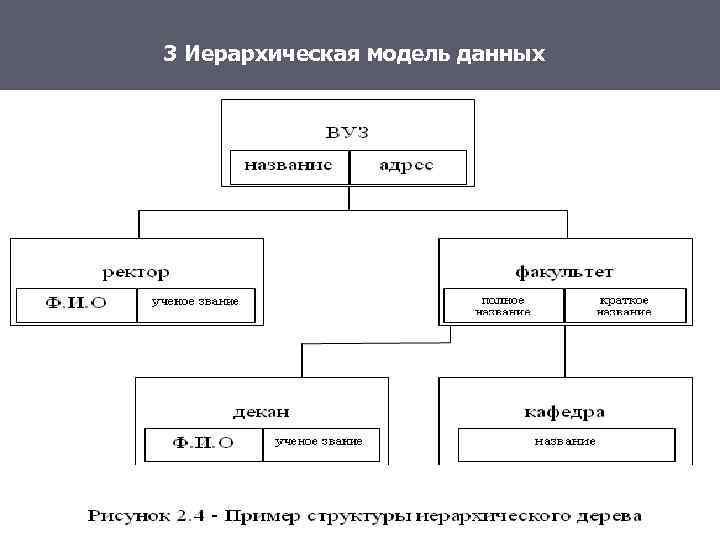 3 Иерархическая модель данных