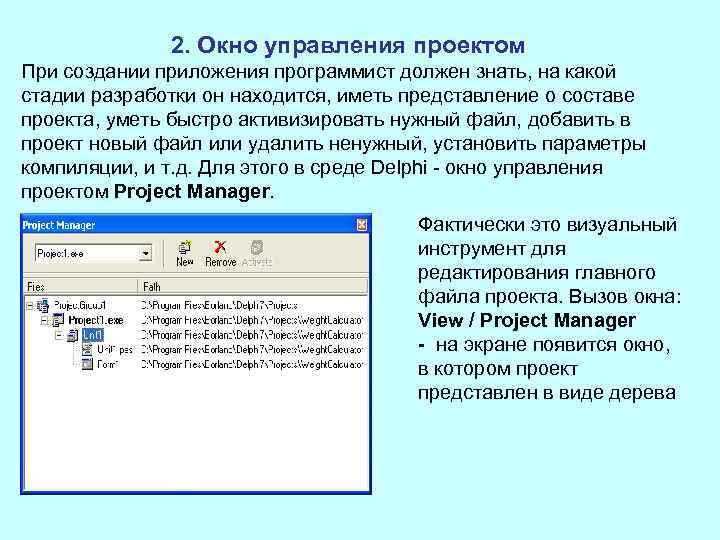 2. Окно управления проектом При создании приложения программист должен знать, на какой стадии разработки