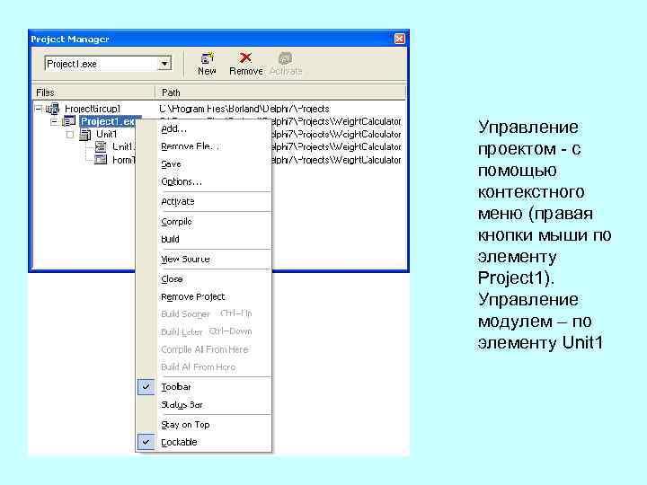 Управление проектом с помощью контекстного меню (правая кнопки мыши по элементу Project 1). Управление