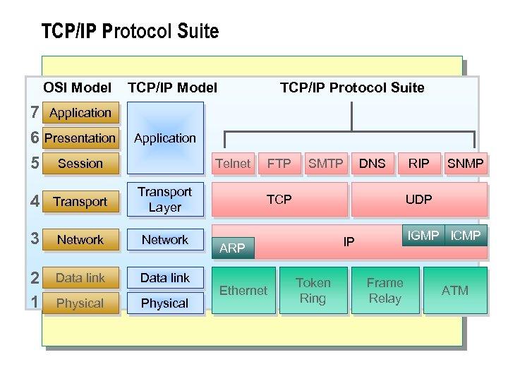 TCP/IP Protocol Suite OSI Model 7 Application 6 Presentation 5 Session TCP/IP Model TCP/IP