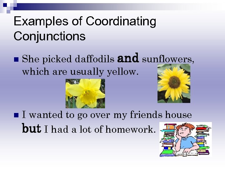 Examples of Coordinating Conjunctions n n She picked daffodils and sunflowers, which are usually