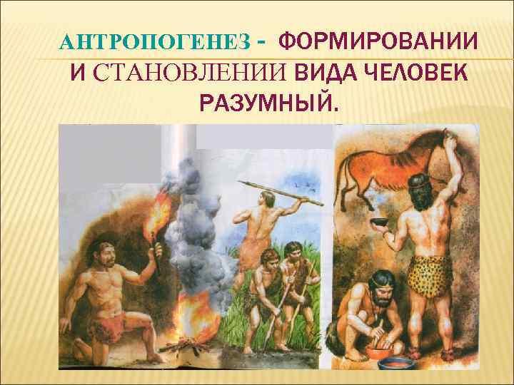 АНТРОПОГЕНЕЗ - ФОРМИРОВАНИИ И СТАНОВЛЕНИИ ВИДА ЧЕЛОВЕК РАЗУМНЫЙ.