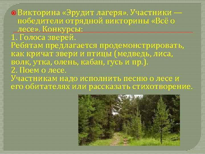 Викторина «Эрудит лагеря» . Участники — победители отрядной викторины «Всё о лесе» .