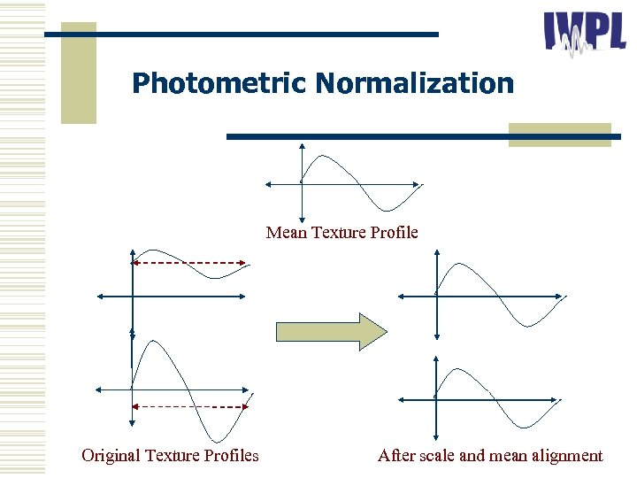 Photometric Normalization Mean Texture Profile Original Texture Profiles After scale and mean alignment