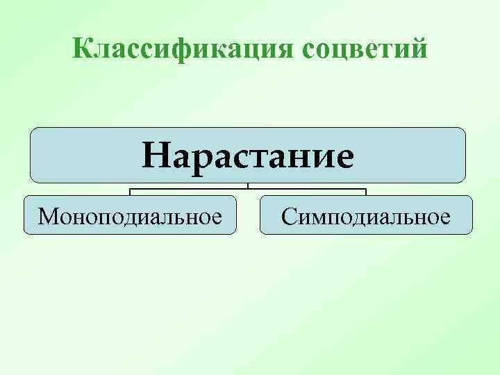 Классификация соцветий Нарастание Моноподиальное Симподиальное