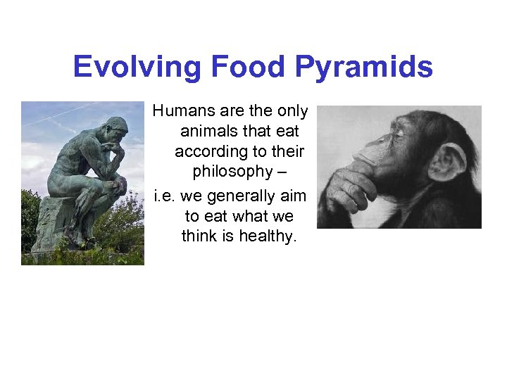 Evolving Food Pyramids Humans are the only animals that eat according to their philosophy