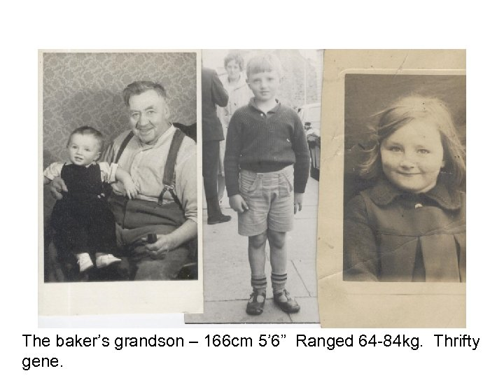 """The baker's grandson – 166 cm 5' 6"""" Ranged 64 -84 kg. Thrifty gene."""