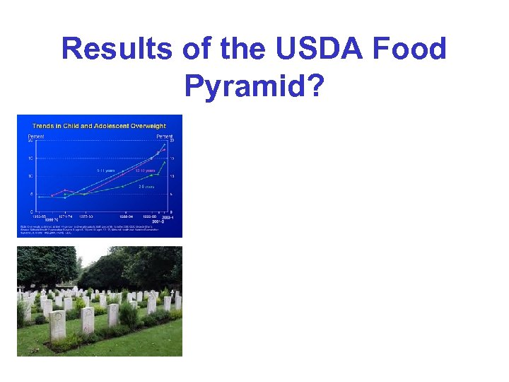 Results of the USDA Food Pyramid?