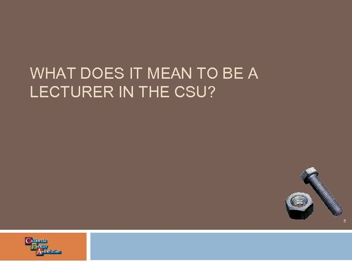 WHAT DOES IT MEAN TO BE A LECTURER IN THE CSU? 3