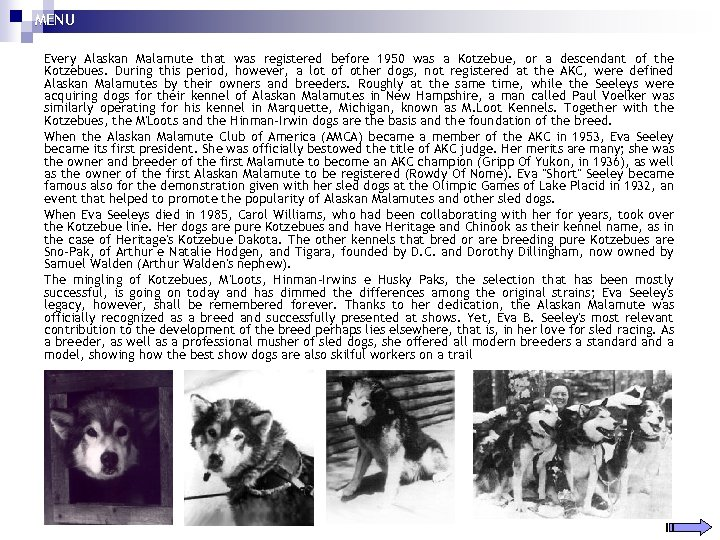 MENU Every Alaskan Malamute that was registered before 1950 was a Kotzebue, or a
