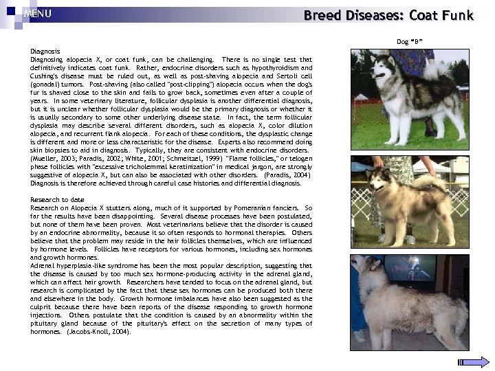"MENU Breed Diseases: Coat Funk Dog ""B"" Diagnosis Diagnosing alopecia X, or coat funk,"