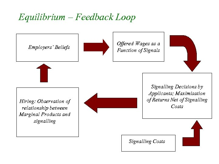Equilibrium – Feedback Loop Employers' Beliefs Hiring: Observation of relationship between Marginal Products and