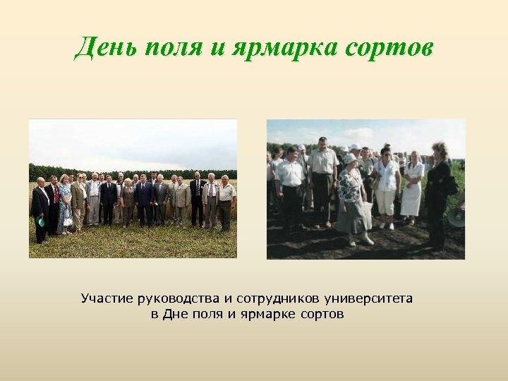 День поля и ярмарка сортов Участие руководства и сотрудников университета в Дне поля и
