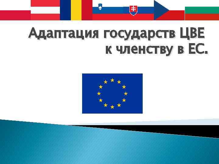 Адаптация государств ЦВЕ к членству в ЕС.