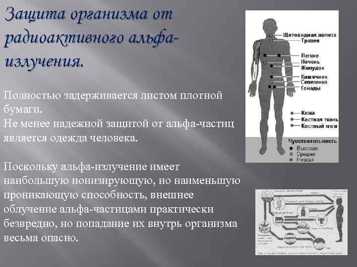 Защита организма от радиоактивного альфаизлучения. Полностью задерживается листом плотной бумаги. Не менее надежной защитой