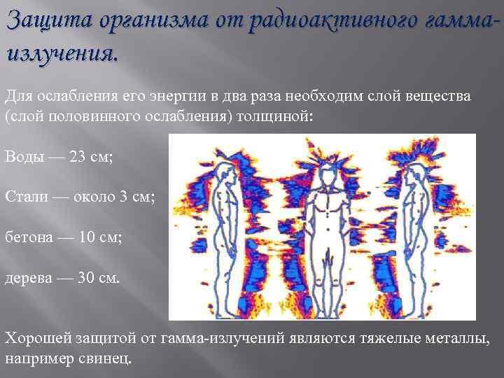 Защита организма от радиоактивного гаммаизлучения. Для ослабления его энергии в два раза необходим слой