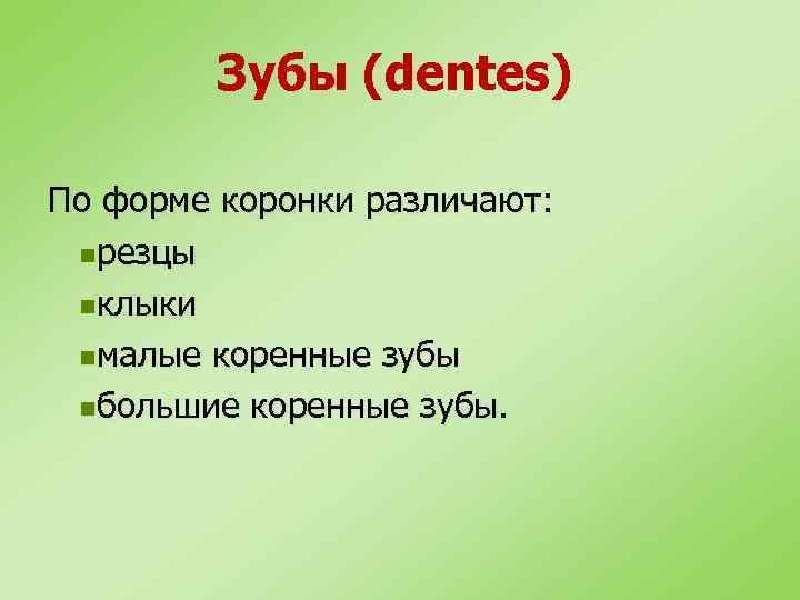 Зубы (dentes) По форме коронки различают: nрезцы nклыки nмалые коренные зубы nбольшие коренные зубы.