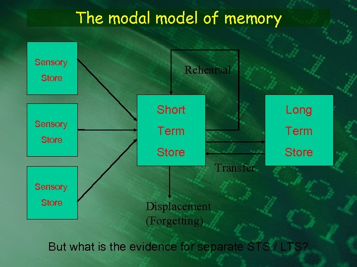 The modal model of memory Sensory Store Rehearsal Short Store Term Store Sensory Long