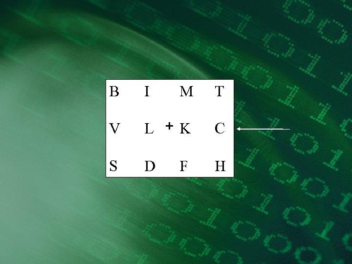 B I M T V L +K C S D H F