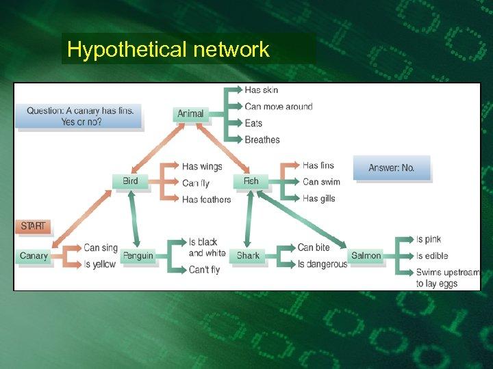 Hypothetical network