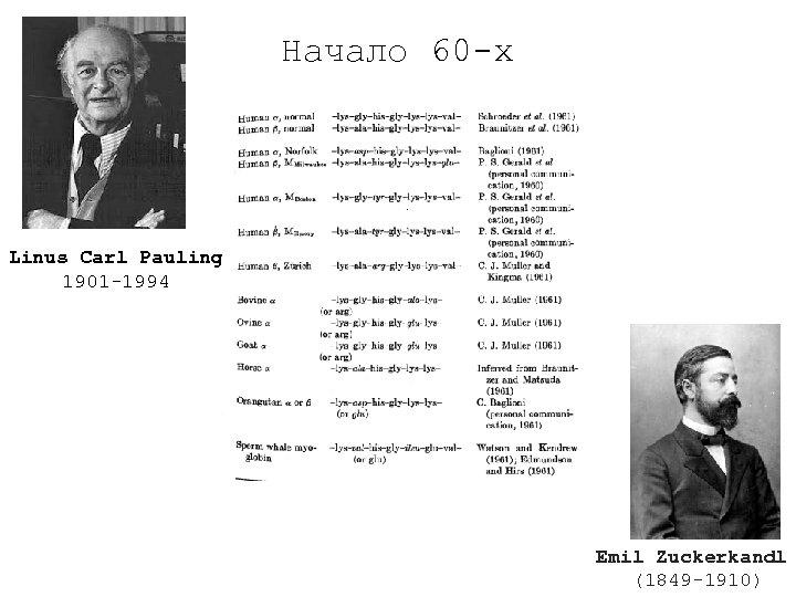 Начало 60 -х Linus Carl Pauling 1901 -1994 Emil Zuckerkandl (1849 -1910)