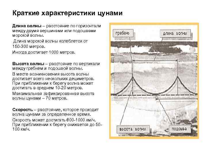 Краткие характеристики цунами Длина волны – расстояние по горизонтали между двумя вершинами или подошвами