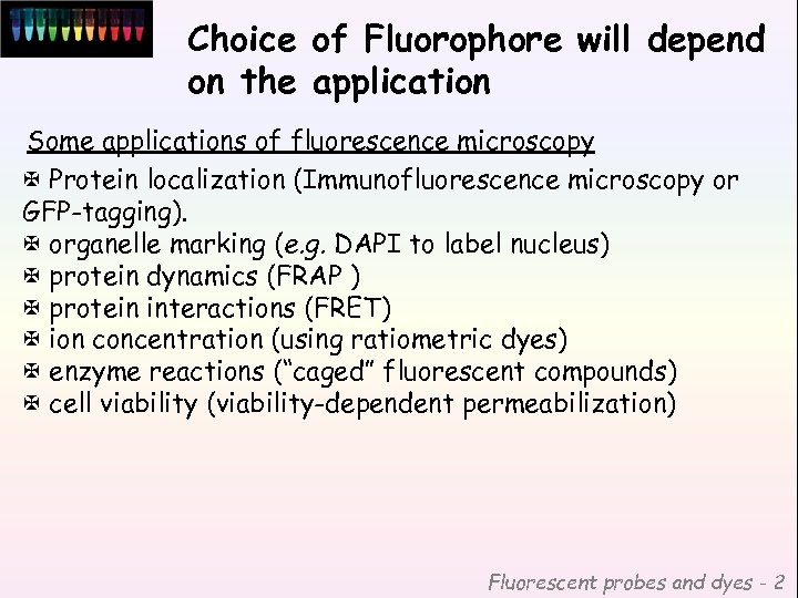 Choice of Fluorophore will depend on the application Some applications of fluorescence microscopy X