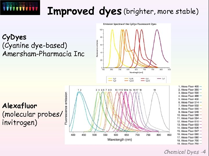 Improved dyes (brighter, more stable) Cy. Dyes (Cyanine dye-based) Amersham-Pharmacia Inc Alexafluor (molecular probes/