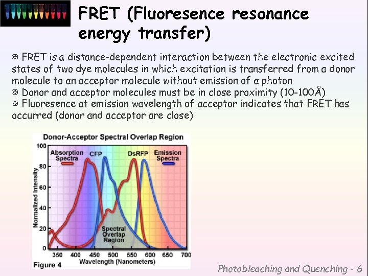 FRET (Fluoresence resonance energy transfer) X FRET is a distance-dependent interaction between the electronic