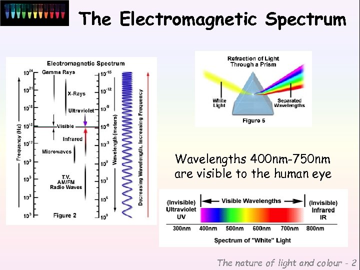 The Electromagnetic Spectrum Wavelengths 400 nm-750 nm are visible to the human eye The