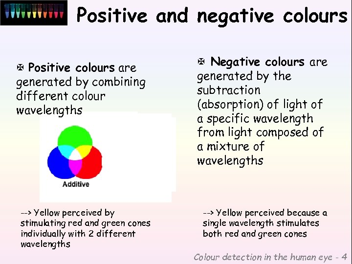 Positive and negative colours X Positive colours are generated by combining different colour wavelengths
