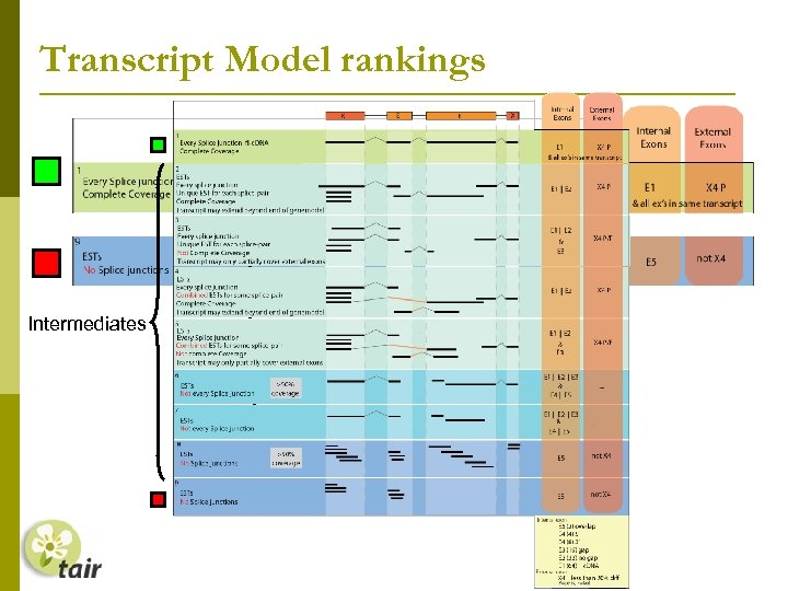 Transcript Model rankings Intermediates