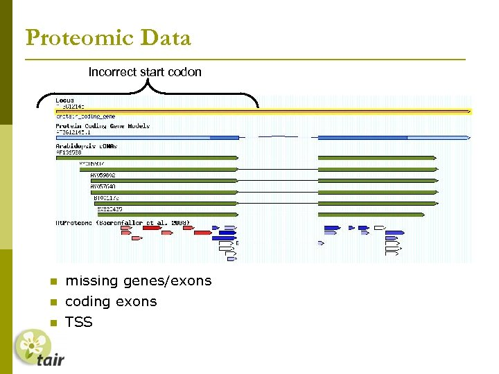 Proteomic Data Incorrect start codon High-density Arabidopsis proteome map (Baerenfaller. 2008) Verification of gene